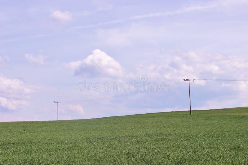 Gebied. Wolken, Hemel. gras, kruid, groen-veevoeder. stock fotografie
