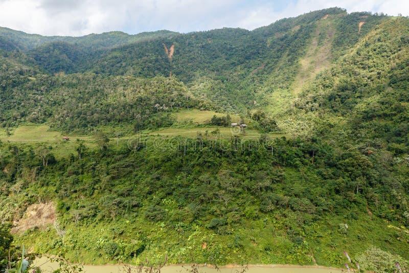 Gebieden en wildernis op de berghelling stock foto