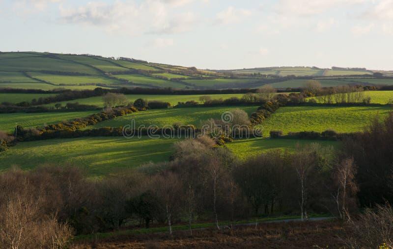Gebieden op Exmoor dichtbij Lynton, Devon, Engeland stock foto