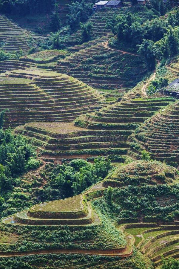 Gebieden in Vietnam royalty-vrije stock afbeelding