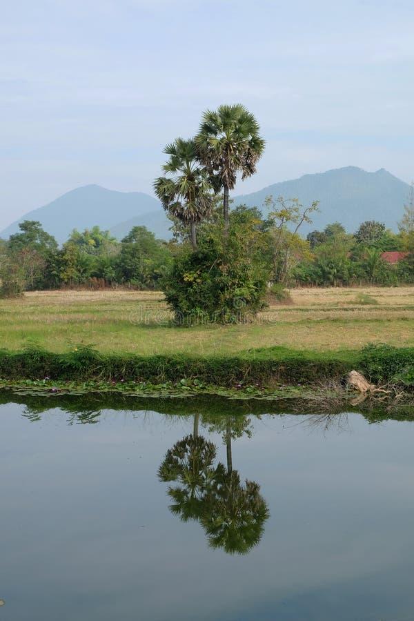 gebieds uitstekend landschap Thailand stock afbeeldingen