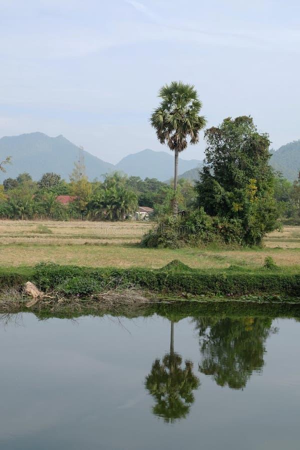 gebieds uitstekend landschap Thailand stock foto's