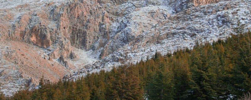 Gebirgs-Berg-spor Feiertag lizenzfreie stockbilder