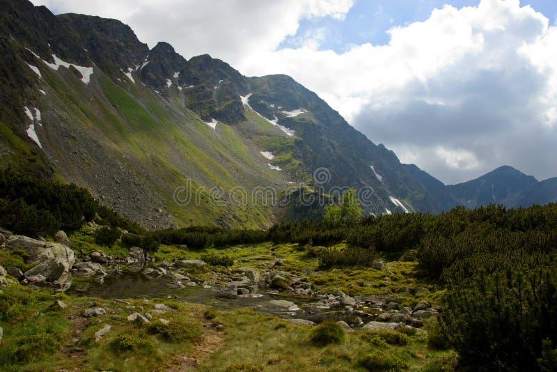 Gebirgsbach mit Flusssteinen lizenzfreies stockfoto