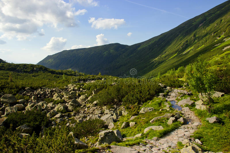 Gebirgsbahn durch Berge stockfotos