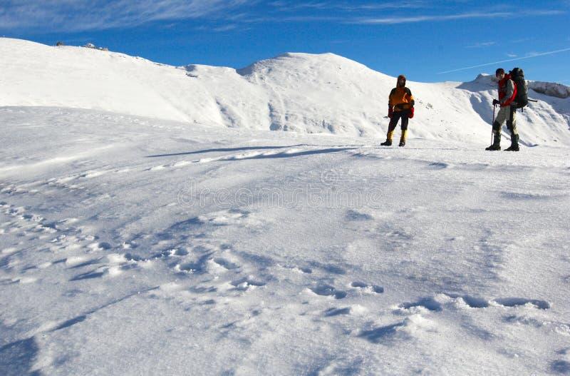 Gebirgsbergsteiger, die in Richtung des Berges blicken. lizenzfreie stockbilder