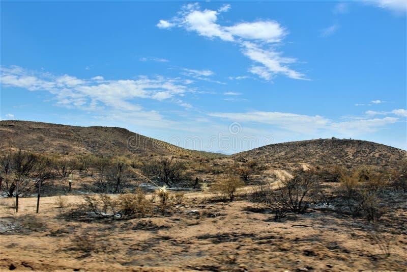 Gebirgsfeuer bei Bartlett Lake Reservoir, Tonto-staatlicher Wald, Maricopa County, Staat Arizona, Vereinigte Staaten lizenzfreies stockbild