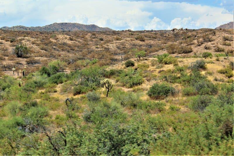 Gebirgsfeuer bei Bartlett Lake Reservoir, Tonto-staatlicher Wald, Maricopa County, Staat Arizona, Vereinigte Staaten stockfotos