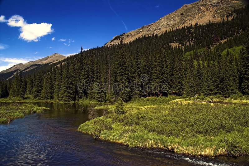Gebirgsfluß in Kolorado stockfotografie