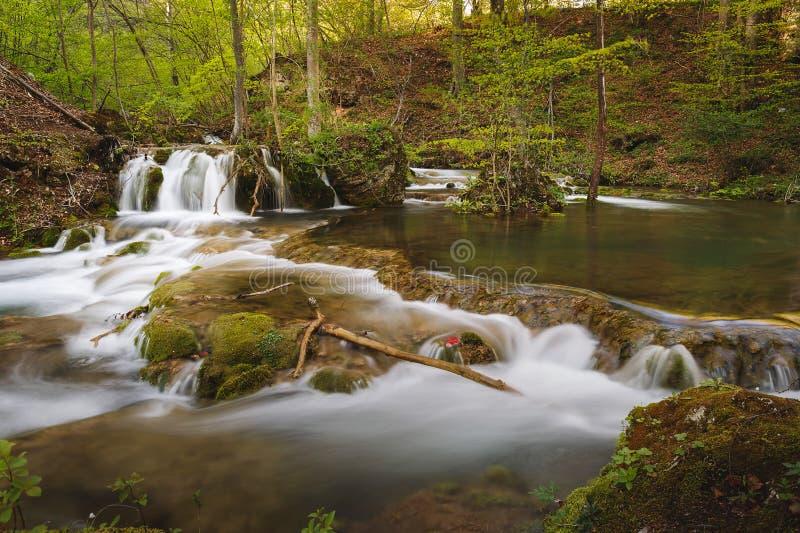 Gebirgsfluß und -wasserfall im Frühjahr stockfotografie