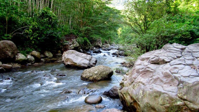 Gebirgsfluss mitten in Wald, in Tasikmalaya, West-Java, Indonesien stockfotografie