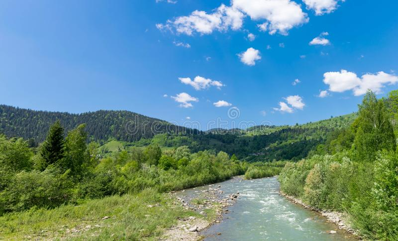 Gebirgsfluss Prut in den Karpaten lizenzfreie stockfotografie