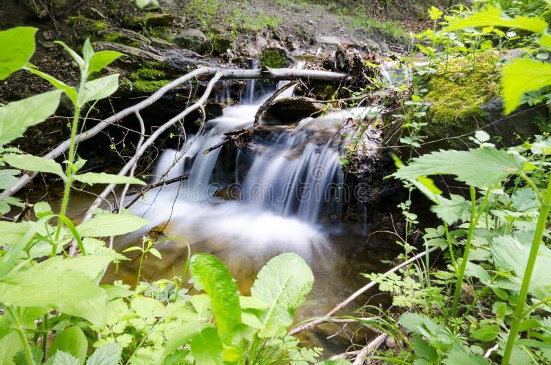 Gebirgsfluss unter Steinen und Laubbüschen lizenzfreie stockfotografie