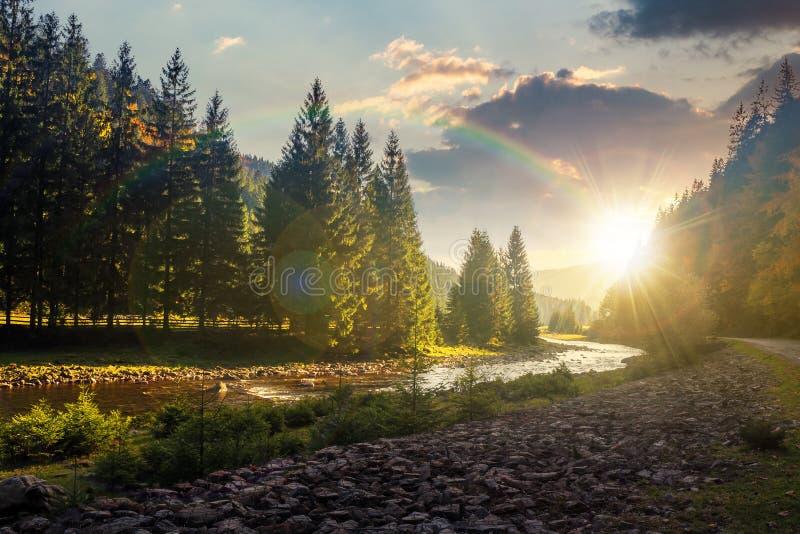 Gebirgsflusswicklung durch Wald bei Sonnenuntergang lizenzfreies stockbild