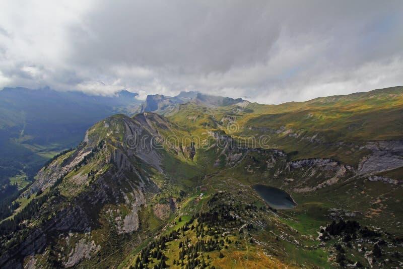 Gebirgsgummilack in der Schweiz lizenzfreie stockbilder