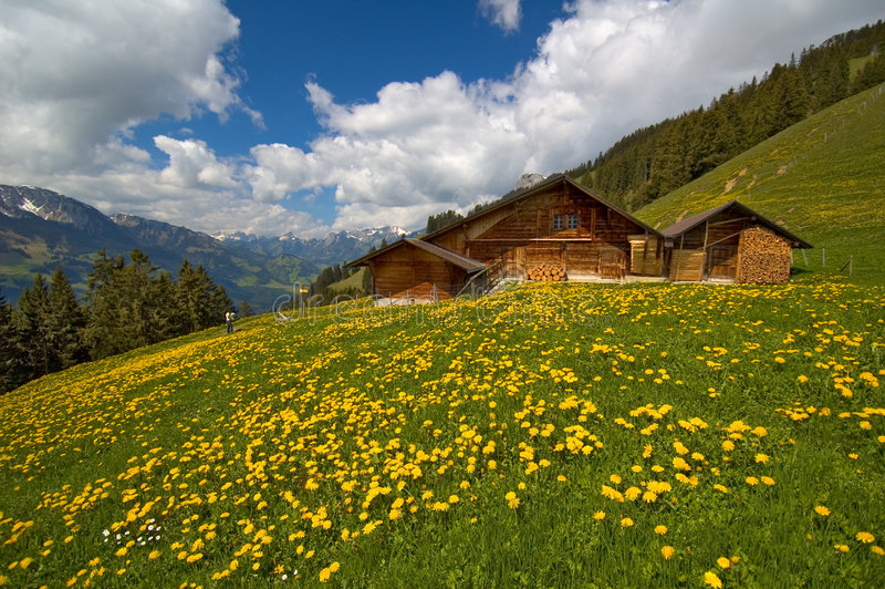 Gebirgshütte im Frühjahr lizenzfreies stockfoto