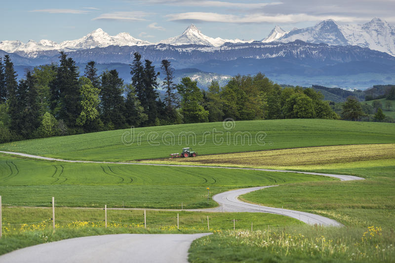 Gebirgslandschaft mit grünem Feld lizenzfreies stockfoto