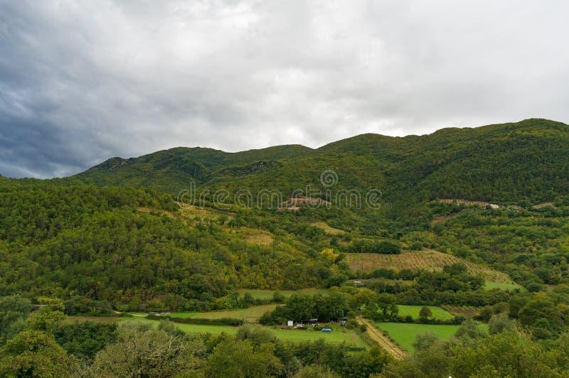 Gebirgslandschaftspanorama mit Grünfeldern und -wald stockbilder