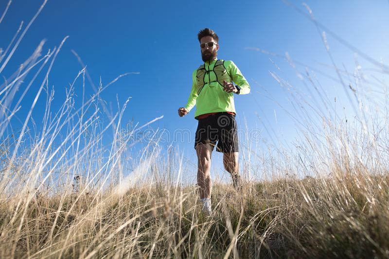Gebirgslaufender Athlet abwärts unter den Herbstwiesen stockbild