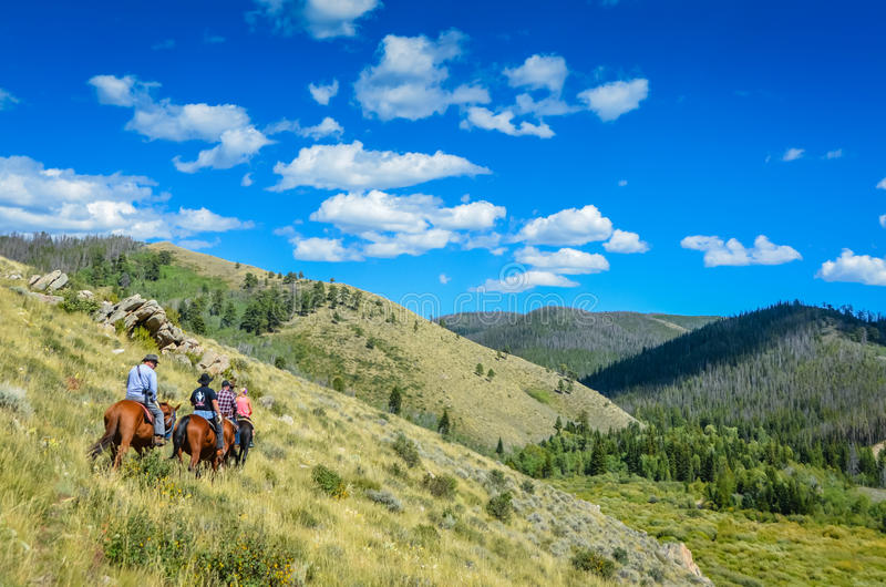 Gebirgspfad-Fahrt - Medizin-Bogen-staatlicher Wald - Wyoming stockbild