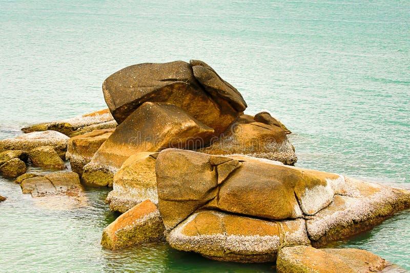 Gebirgsrückenteil der großen verwitterten Meerespflanze der Strandsteine bedeckt mit Marineanlagen und Miesmuscheloberteilen lizenzfreies stockfoto