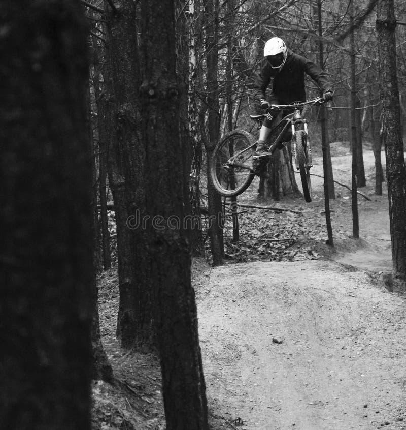 Gebirgsradfahrende Peitsche lizenzfreie stockbilder