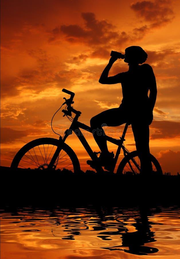 Gebirgsradfahrer lizenzfreie abbildung