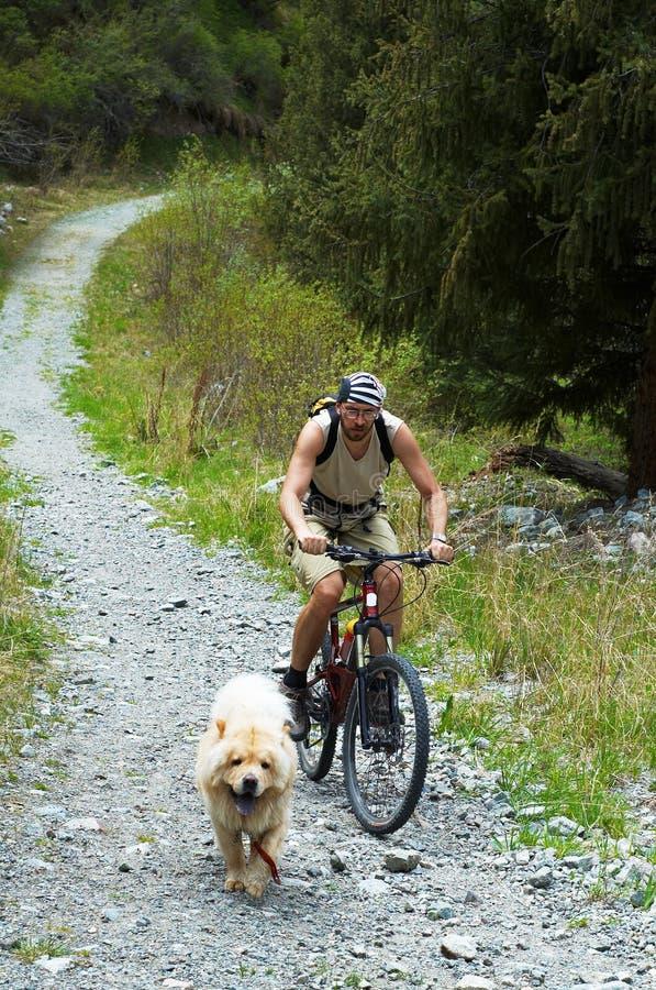 Gebirgsradfahrer und -hund auf alter Straße im Berg lizenzfreie stockfotos