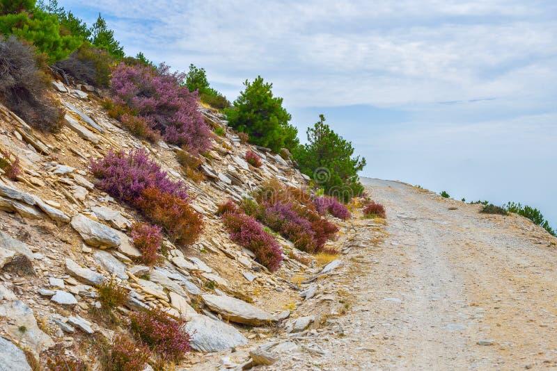 Gebirgsseite der Thassos-Insel, Griechenland lizenzfreies stockbild