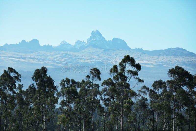 Gebirgsspitze Kenia stockfotos