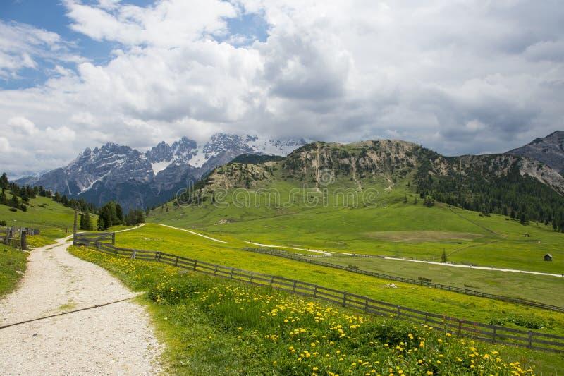 Gebirgsstraße in den Wiesen der italienischen Dolomit lizenzfreie stockfotos