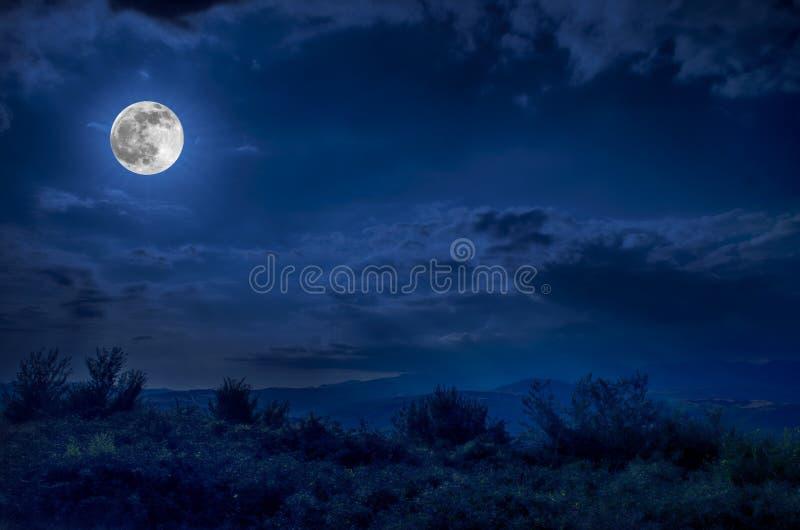 Gebirgsstraße durch den Wald auf einer Vollmondnacht Szenische Nachtlandschaft des dunkelblauen Himmels mit Mond stockfoto