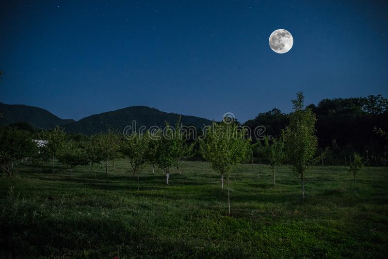 Gebirgsstraße durch den Wald auf einer Vollmondnacht Szenische Nachtlandschaft des dunkelblauen Himmels mit Mond azerbaijan lizenzfreie stockbilder
