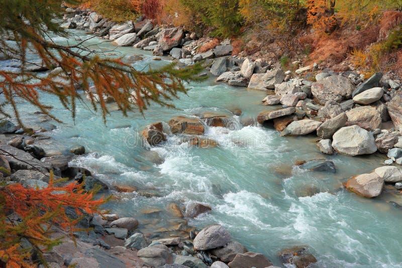 Gebirgsstrom im Wald im Herbst Gornera-Fluss, nahe Gorner-Schlucht, Zermatt, Kanton Wallis, die Schweiz stockbilder