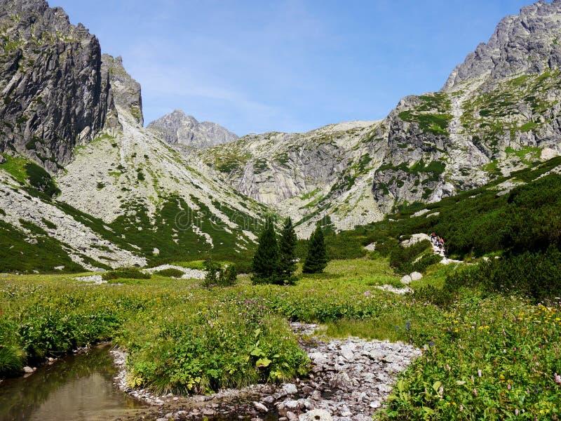 Gebirgstal in hohem Tatras lizenzfreie stockfotografie