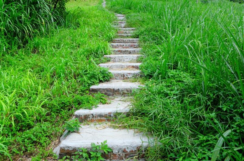 Download Gebirgsweg für das Wandern stockbild. Bild von expedition - 26352791