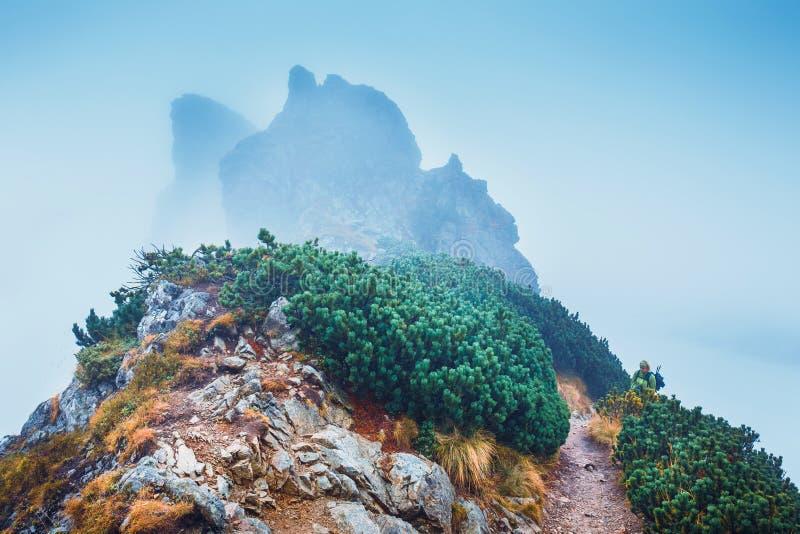 Gebirgsweg versteckt im Nebel stockbilder