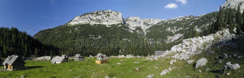 Gebirgswiese Planina V Lazu in den julianischen Alpen stockbild