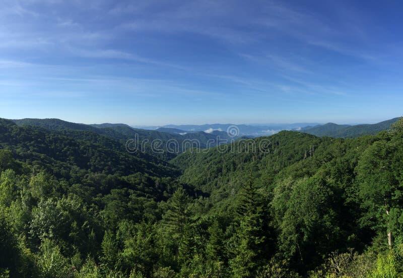 Gebirgszug eines grünen Waldes stockbild