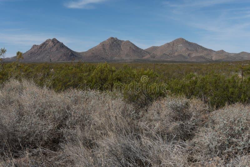 Gebirgszug Tres Hermanas im Südwestennew mexico und in der Wüstenbürste stockbild