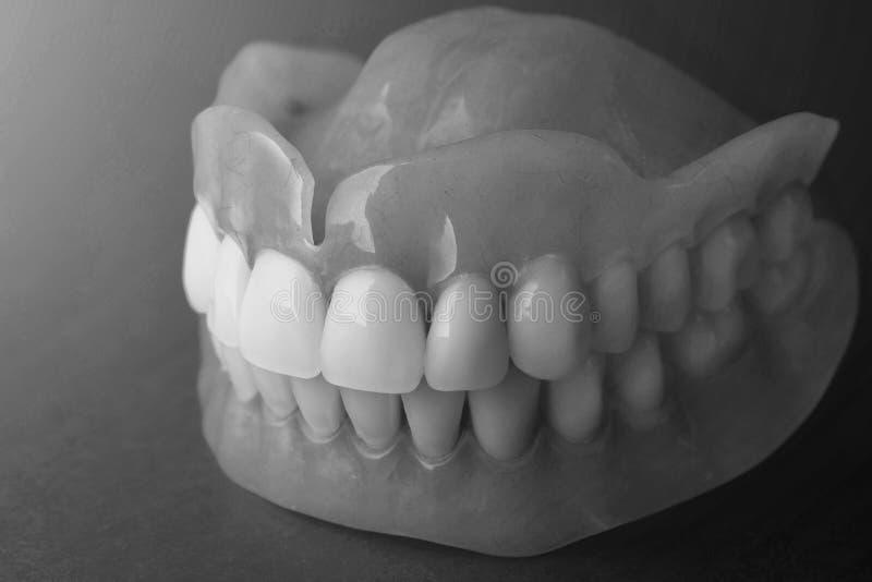 gebisse Isolat auf Acrylprothese des weißen Hintergrundes von huma stockfoto