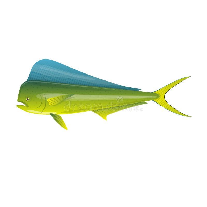 Gebissen in den Kapazitäten Schöne, bunte Ozeanfische Dorado Mahi-Mahi vektor abbildung