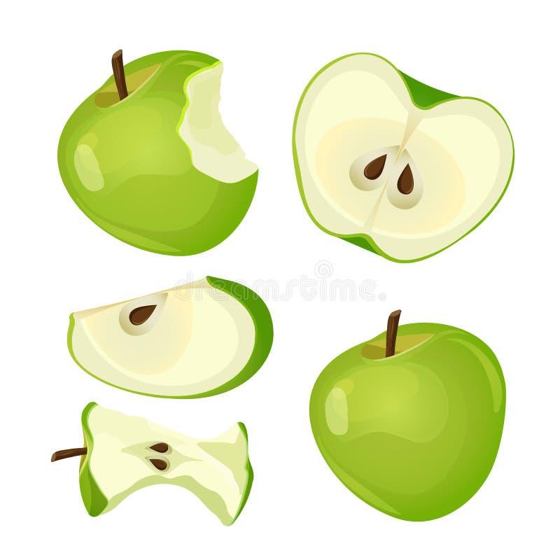 Gebissener Apfel, ganz, Hälfte und Scheibe lokalisiert auf weißem Hintergrund vektor abbildung