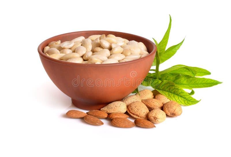 Geblichene Mandeln in einer Schüssel mit ungeschälten Nüssen auf weißem backgro lizenzfreies stockbild