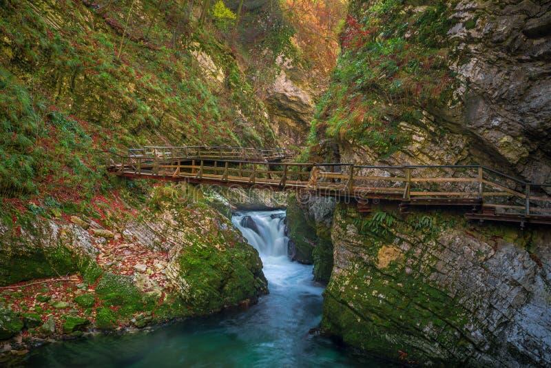 Geblutet, die schöne Vintgar-Schlucht Schlucht Sloweniens - mit Holzbrücke stockfoto