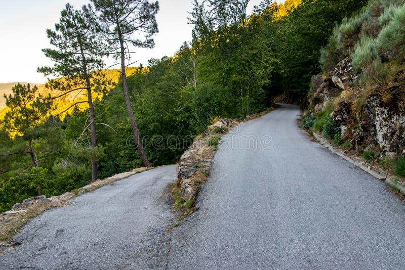 Gebogen asfaltweg in bergen royalty-vrije stock foto