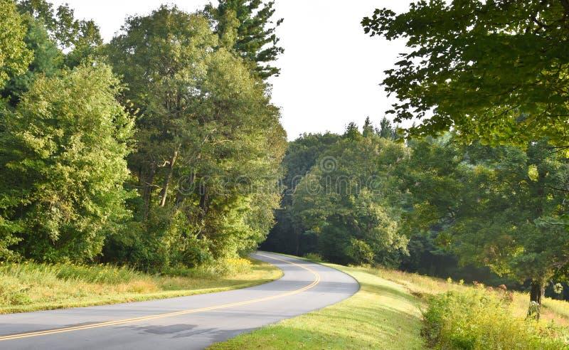 Gebogen Bergweg met Bomen en Bloemen stock afbeelding