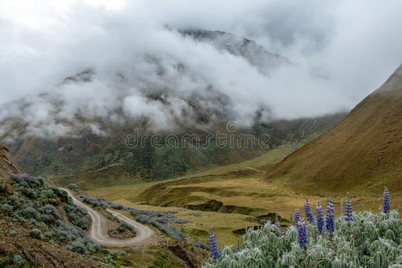 Gebogen bergweg in nevelige bergen, Abra Mariano Llamoja, pas tussen Yanama en Totora, Choquequirao-trek, Peru stock fotografie