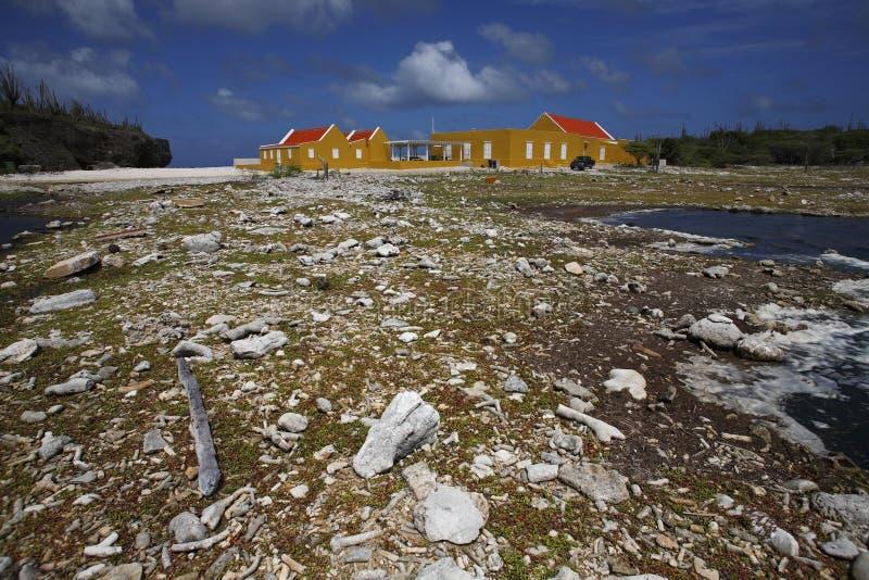 Gebouwen en rotsachtige oever in Bonaire stock foto
