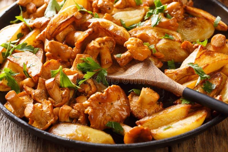 Gebraden aardappels met het close-up van paddestoelencantharellen in een pan horizontaal stock fotografie